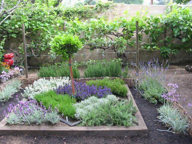 Билкова градина