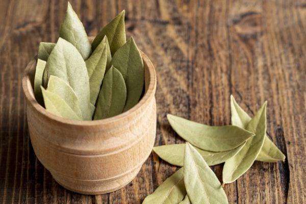 Направете си билково масло с дафинов лист за облекчаване на болките от прищипан нерв.