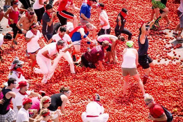 бой с домати