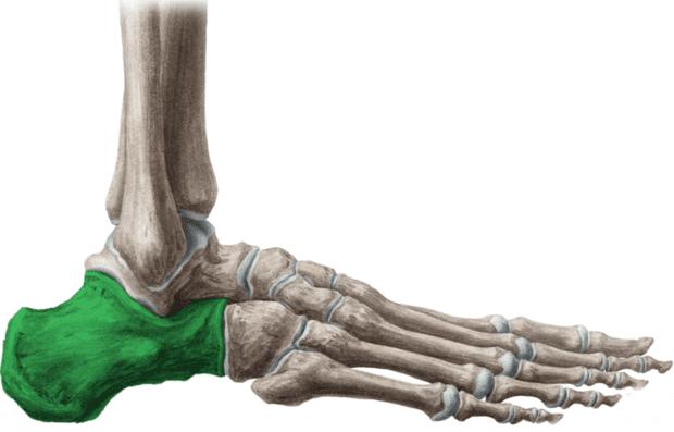 ювенилна остеохондроза на костите на ходилото