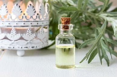етерично масло от бял пелин