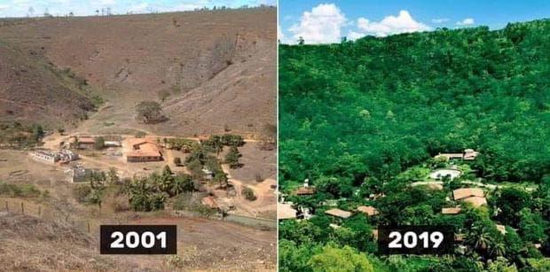бразилска земя преди и след