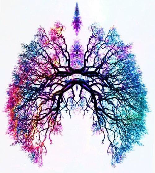 бронхиално дърво