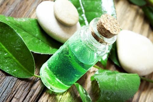 масло от чаено дърво при охлузване