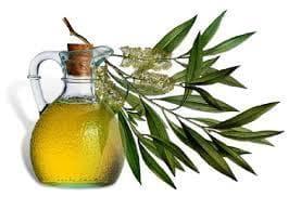 масло от чаено дърво против въшки