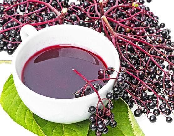Чай от плодовете на черния бъз