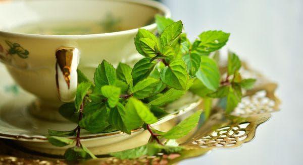 Чай от мента за облекчаване на махмурлук