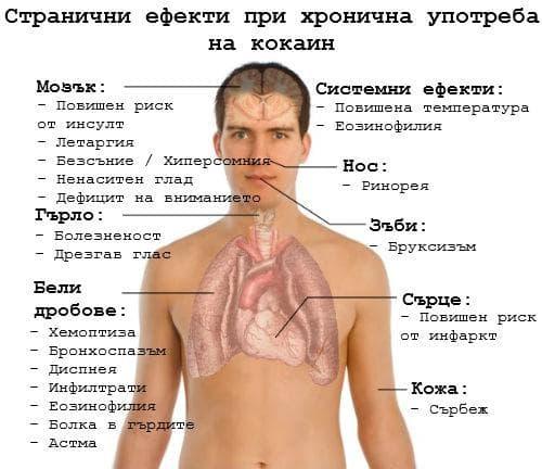 Ефекти при хронична употреба на кокаин