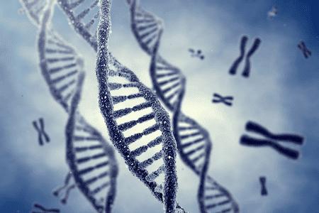 Хромозомен анализ на взетата тъканна проба