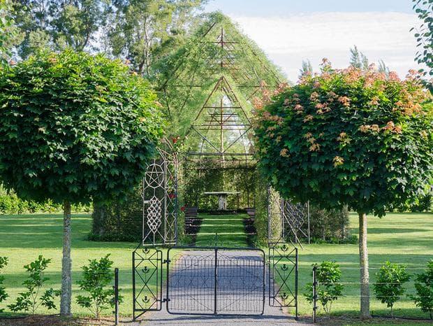 Църква, изградена от живи дървета – мечтата на един новозеландец