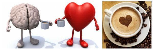 Действие на кофеина върху организма