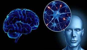 деменция при болестта на Паркинсон