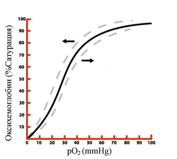 дисоциационна крива на оксихемоглобина