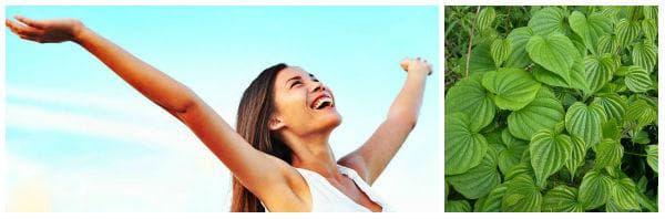 Див ям - в подкрепа на женското здраве