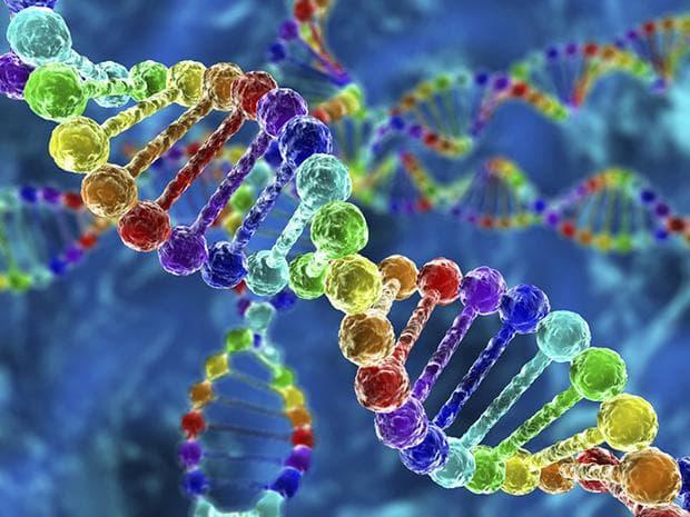 Фамилни и генетични фактори