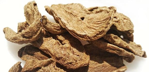 корени от цикория