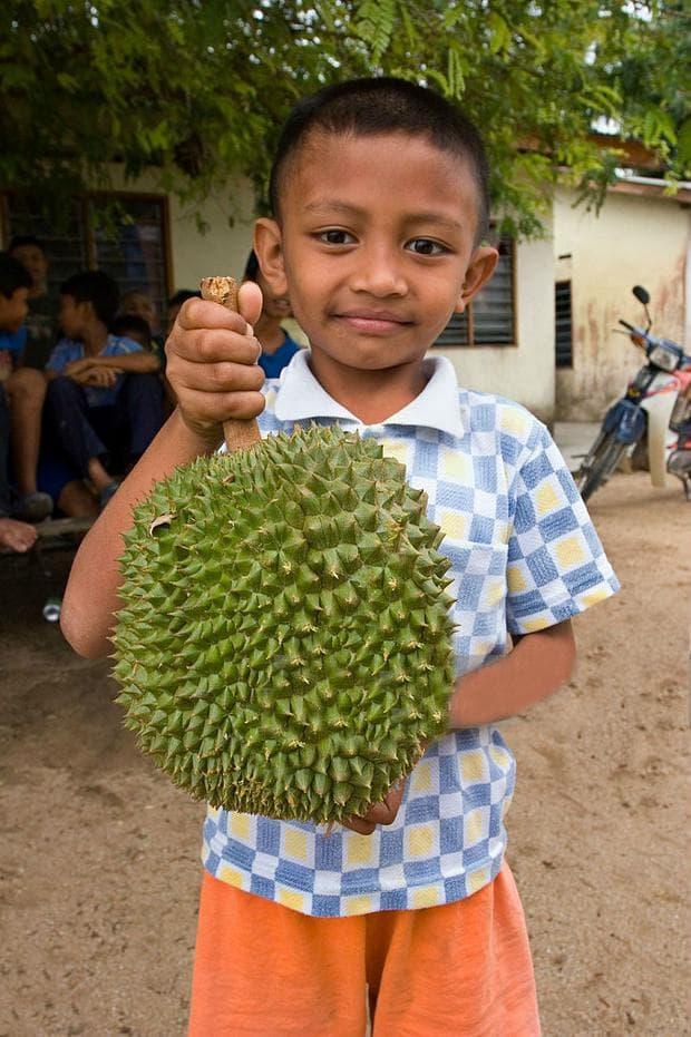 плод на дуриан