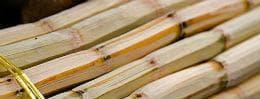 дървесина захарна тръстика