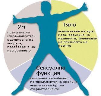 Ефекти от хормоналната терапия при тестостеронов дефицит