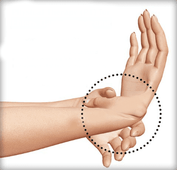 гъвкавост на ръката