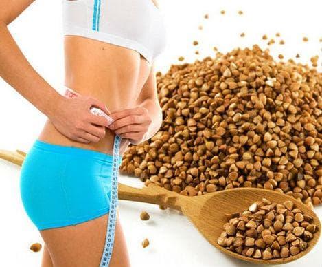 Елдата осигурява висококачествени протеини