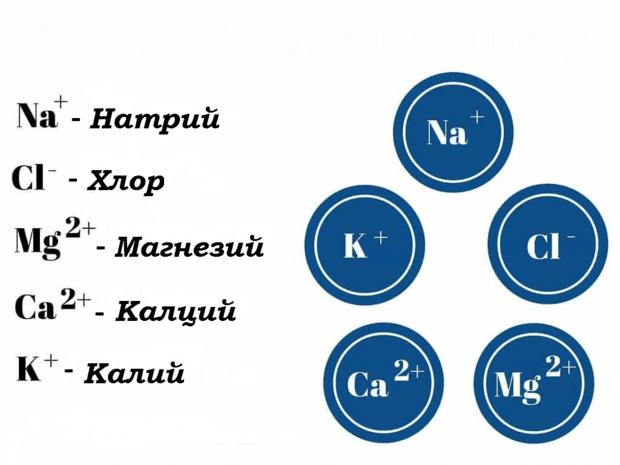 Основни електролити в тялото