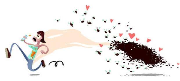 Бръмбари и феромони