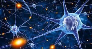 причини за епилепсия