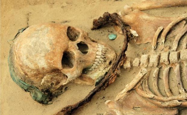 Скелет от некропола в Дравско