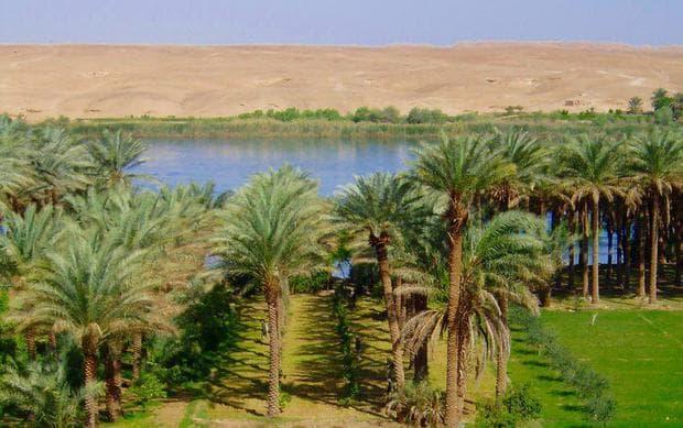 Природата в Месопотамия преди сушата
