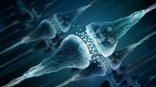 предаване на импулси между неврони
