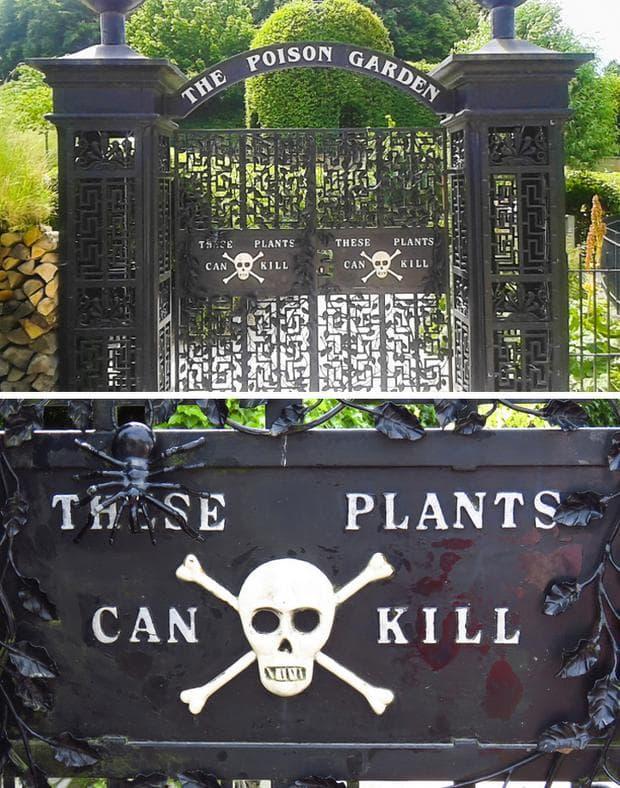 отровна градина