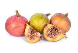 плодове на гулар
