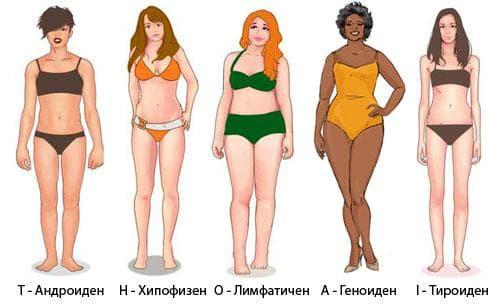 Соматотип жени