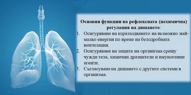рефлексна регулация на дишането