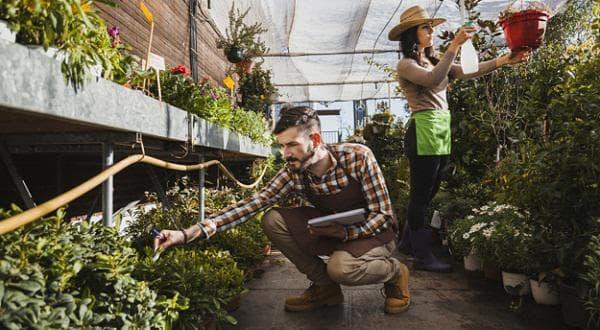 Грижа за растенията