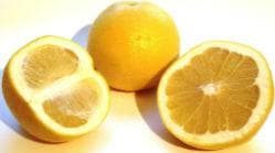 плод на горчив портокал