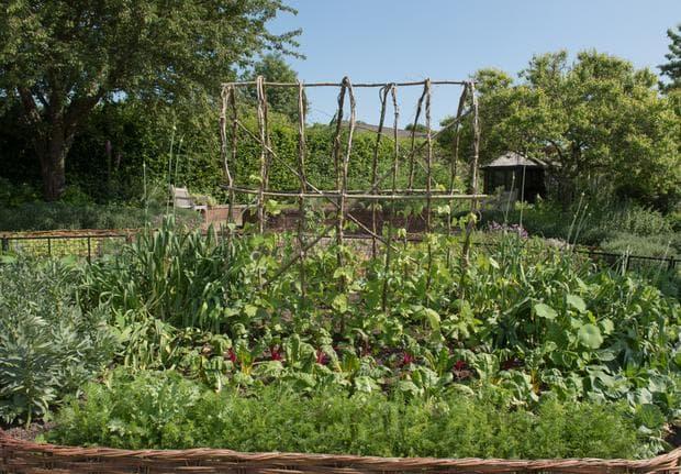 средновековно градинарство