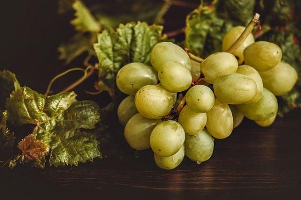 грозде – зелено
