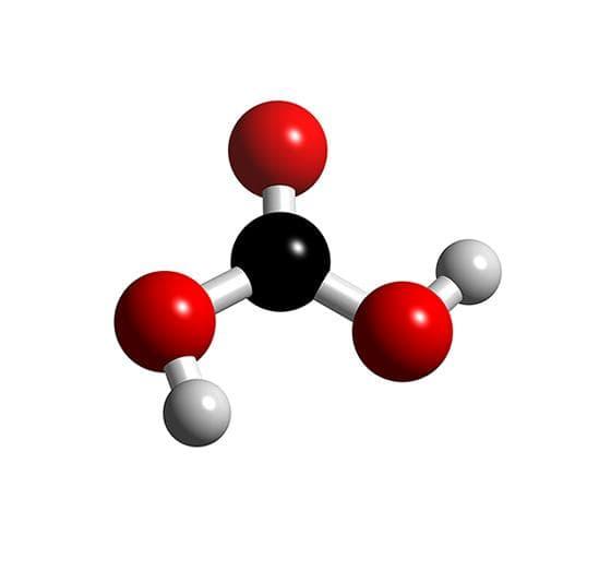 въглеродна киселина