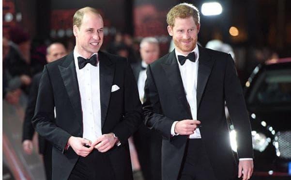 принц Хари и принц Уилям