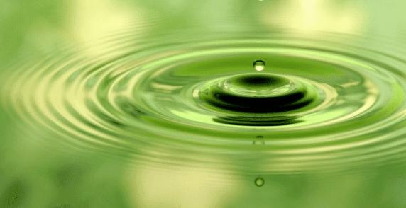 хомеопатия при студова алергия