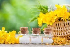 Хомеопатичи средства срещу ужилване