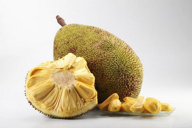 плод джакфрут