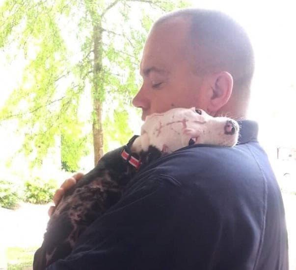 куче и пожарникар