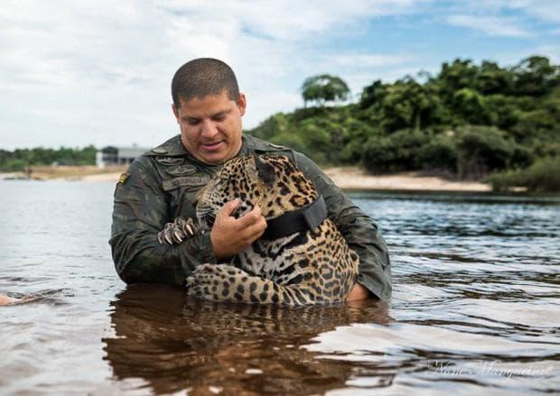 ягуар с войник