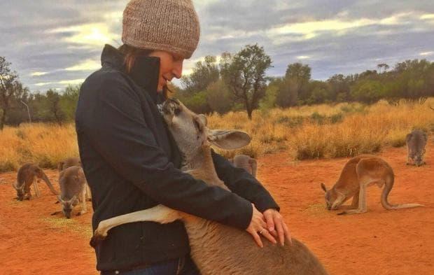 кенгуру и неговият спасител