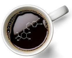 кафе и хранителни вещества