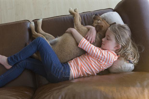 момиче и куче