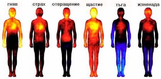карта на базовите емоции